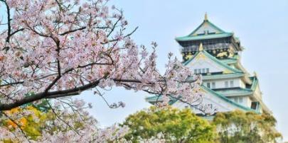 「稻谷财经资讯」东京奥运会延期一年有何影响 有利